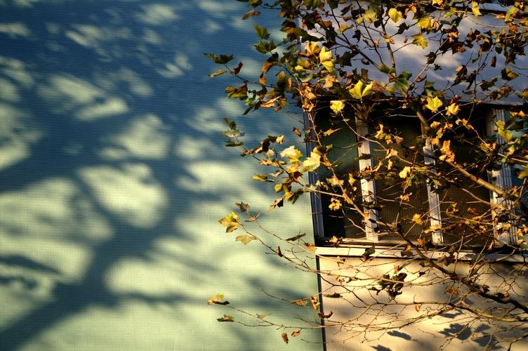 es tu mon ombre, es tu mon reflet?