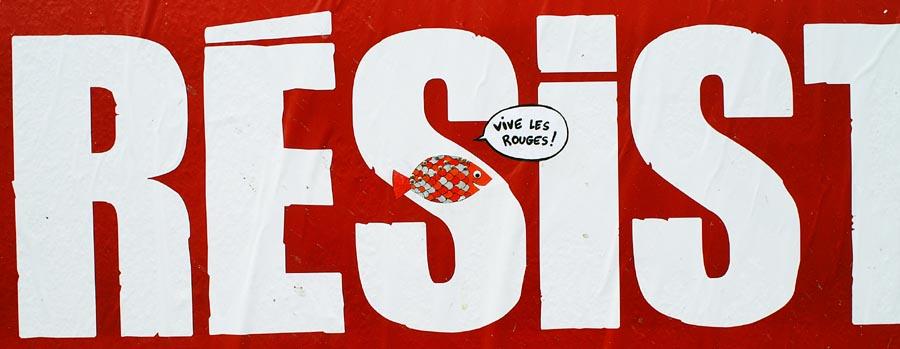 poisson rouge d'avril