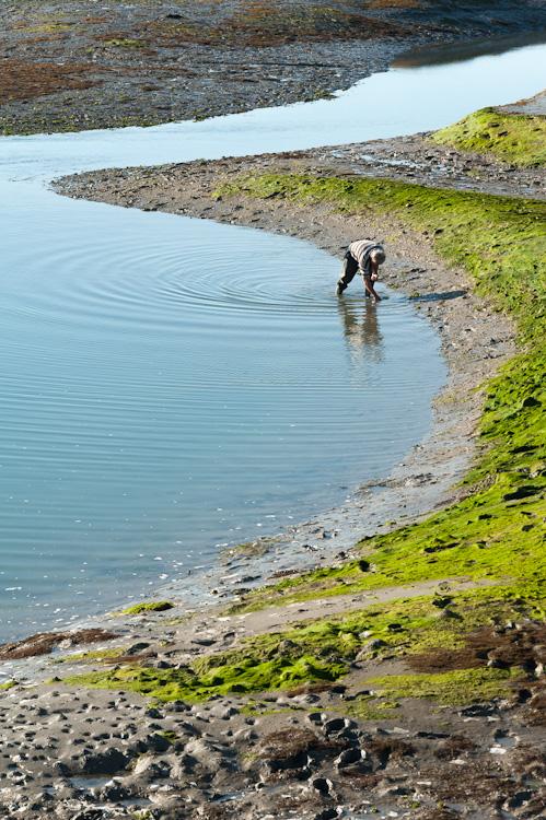 à la pêche #3 (courbé)