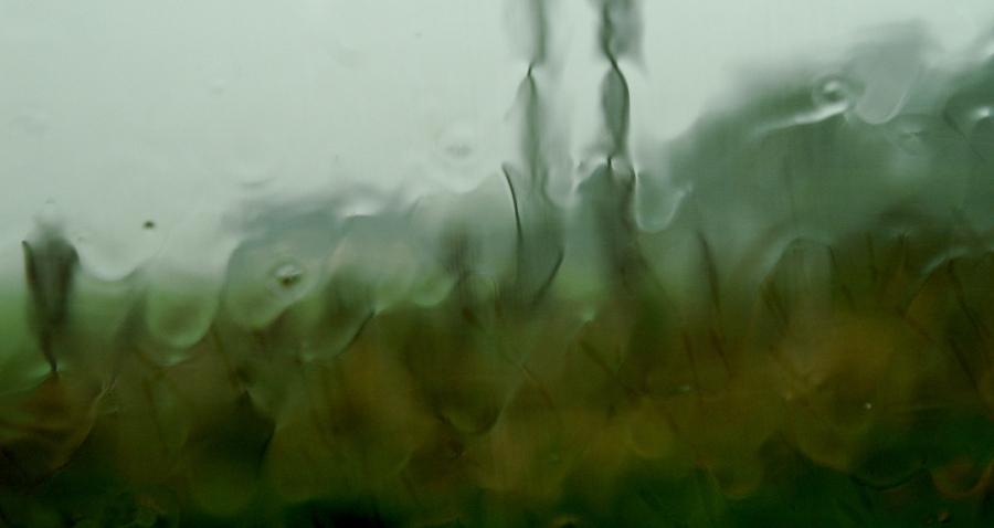 les chants de pluie