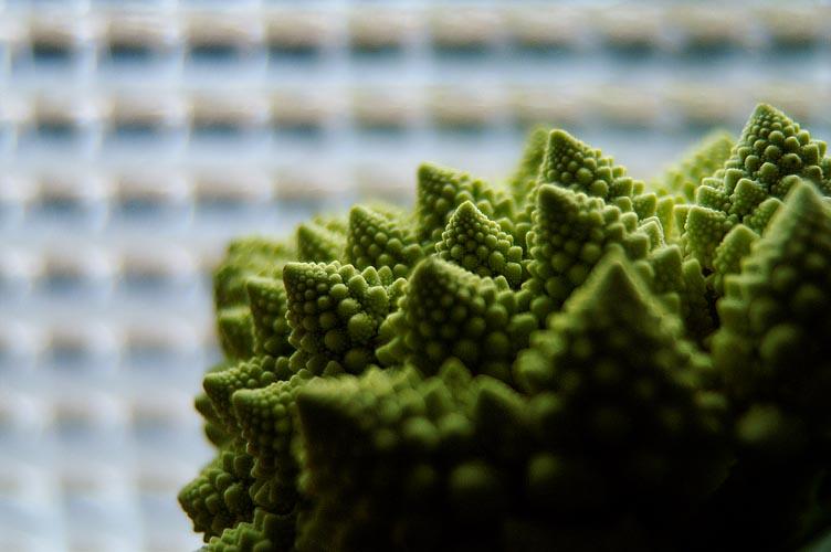 fractales et petits carreaux
