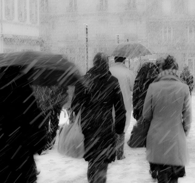 neige impromptue sur Versailles