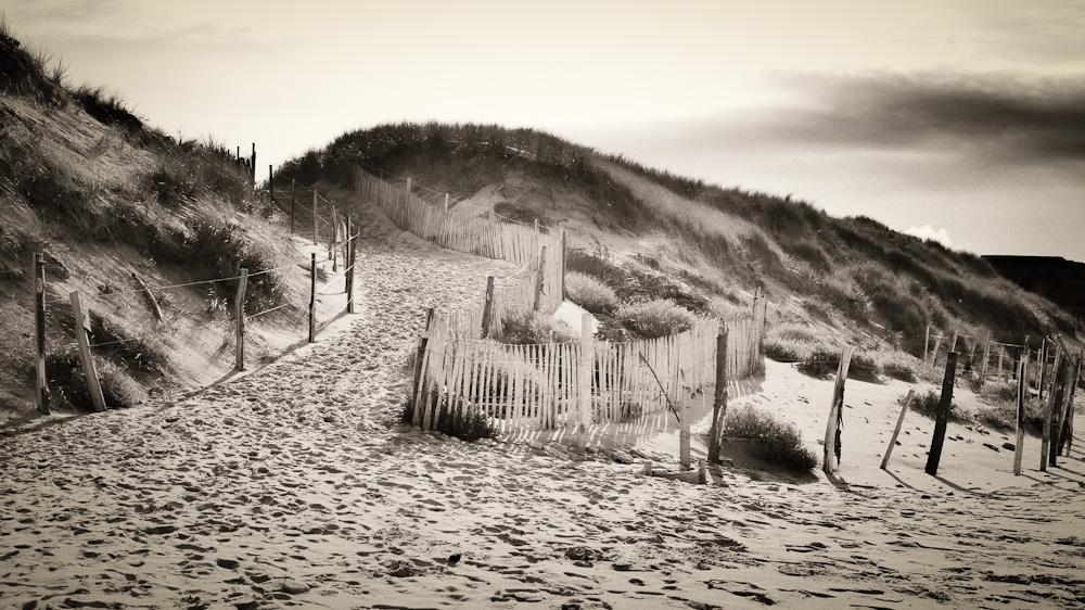 dune désertée